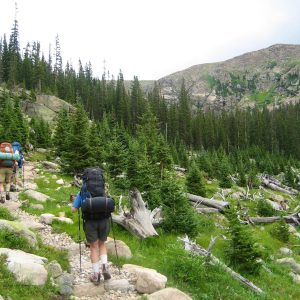 Hikers_on_the_Trail